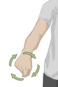 Cómo realizar ejercicios activos para la amplitud de los movimientos_5b
