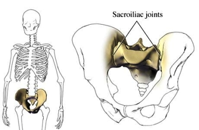articulación sacroilíaca